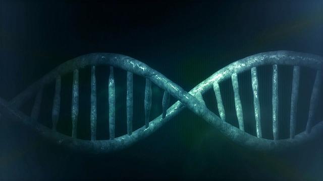 遺伝子のCG画像