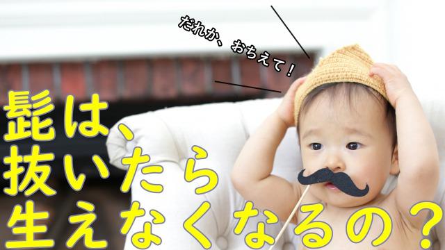 髭をつけた赤ちゃん