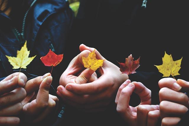 葉っぱを手に取っている人達