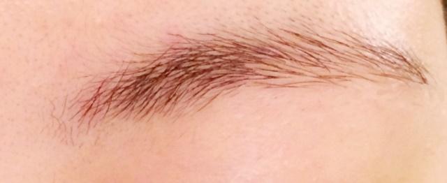 女性の左眉毛