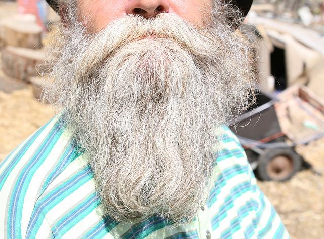 とても長い年配の男性髭