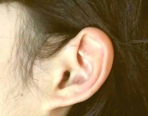 女性の左耳ともみあげ