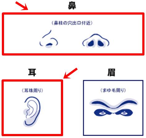 ゴリラクリニックの鼻毛と耳毛