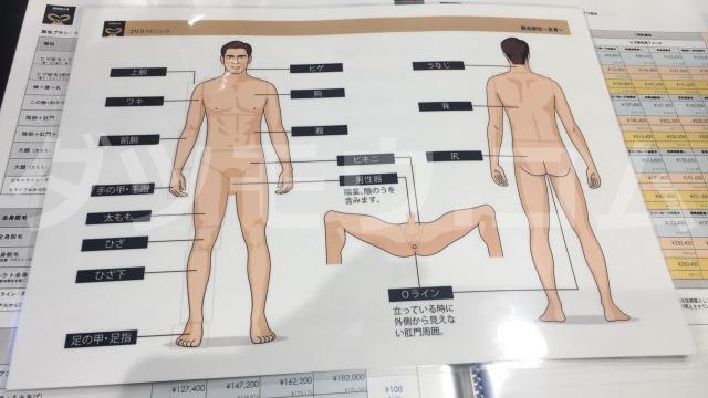 ゴリラクリニックの体照射資料
