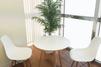 キレイモ(KIREIMO)秋葉原店の椅子と机と植物