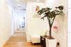 キレイモ(KIREIMO)吉祥寺店の廊下と植物
